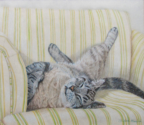 realistic pencil drawing of a cat on a couch