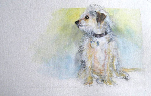 A painting of a small white dog on watercolour paper
