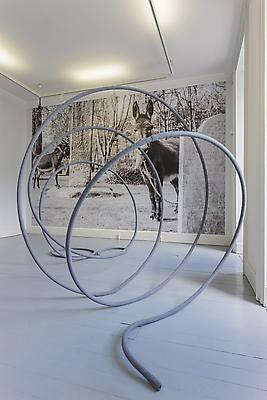 A sculptural work  consisting of a curled metal tube and a forest scene on the wall