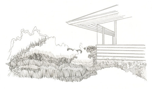 A drawing of the side of a modern house surrounded by grass and trees