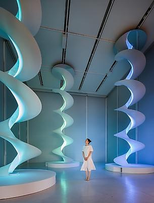 A sculptural installation consisting of several helixes reaching from the ceiling to the floor of the gallery