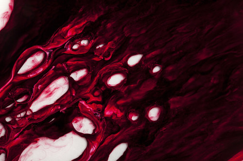 A close-up photo of dark red liquid pigments mixing together