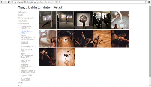 "A screen capture of the ""the the"" performance gallery on Tanya Lukin Linklater's website"