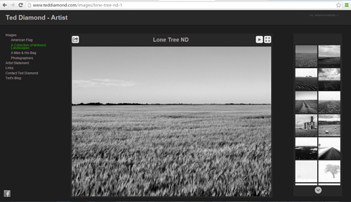 A screen capture of the midwest landscape gallery on Ted Diamond's website