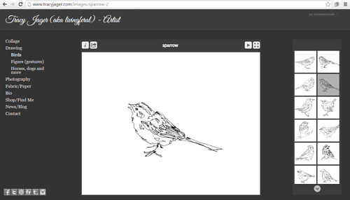 The gallery of bird drawings on Tracy Jager's website