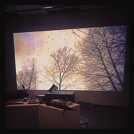 An installation view of a video project by Wynne Palmer