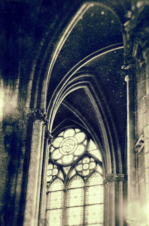 An analogue photograph of the Notre Dame cathedral
