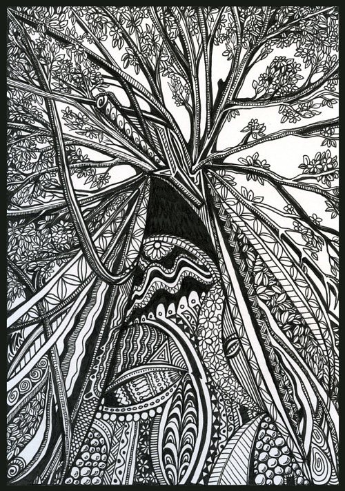 An ink drawing of a large tree seen from a lower angle