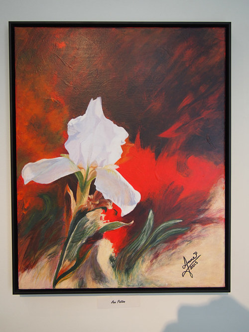 A painting of a white flower by Ann Patton