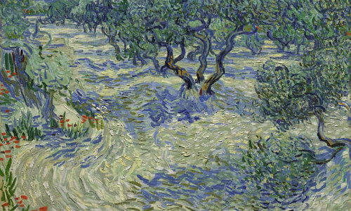 A photo og Van Gogh's Olive Trees
