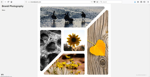 A screen capture of Brandi Maher's photography website