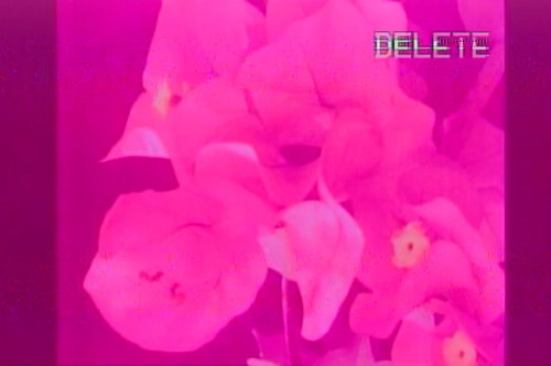 A still from a VHS tape in bright pink