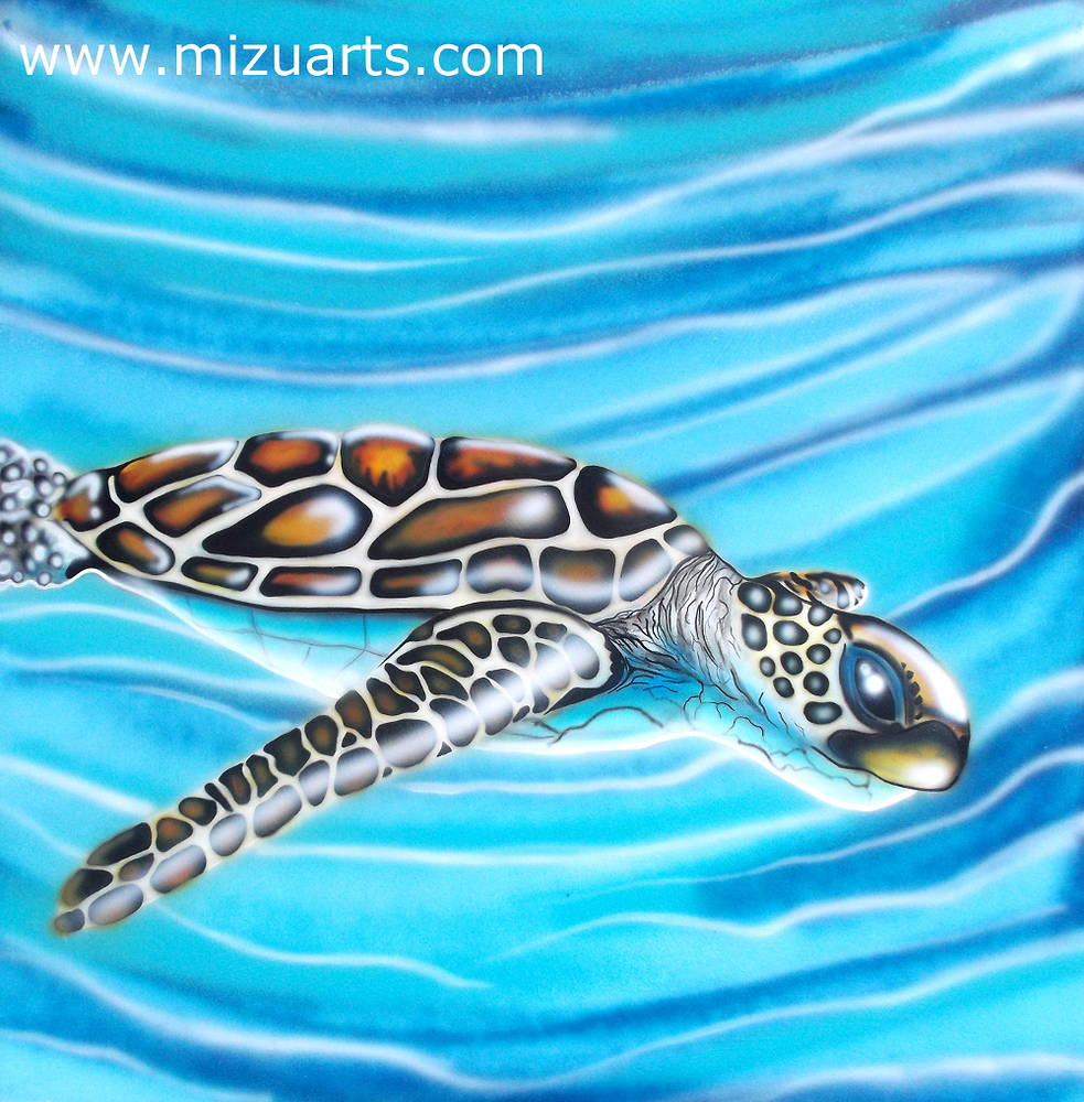 Sea Turtle  by Isaac Carpenter