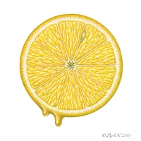 Print Lemon Slice by Sue Ellen Brown