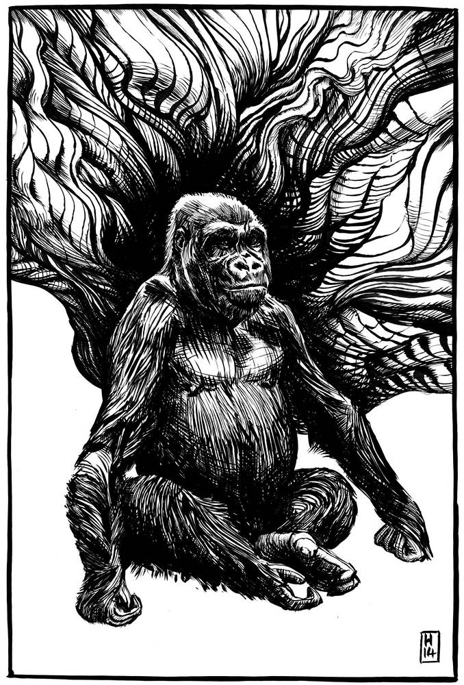 Drawing Gorilla by Hendrik Gericke