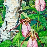 Oil painting Lady Slippers at Sea Dog Cove by Michael McEwing