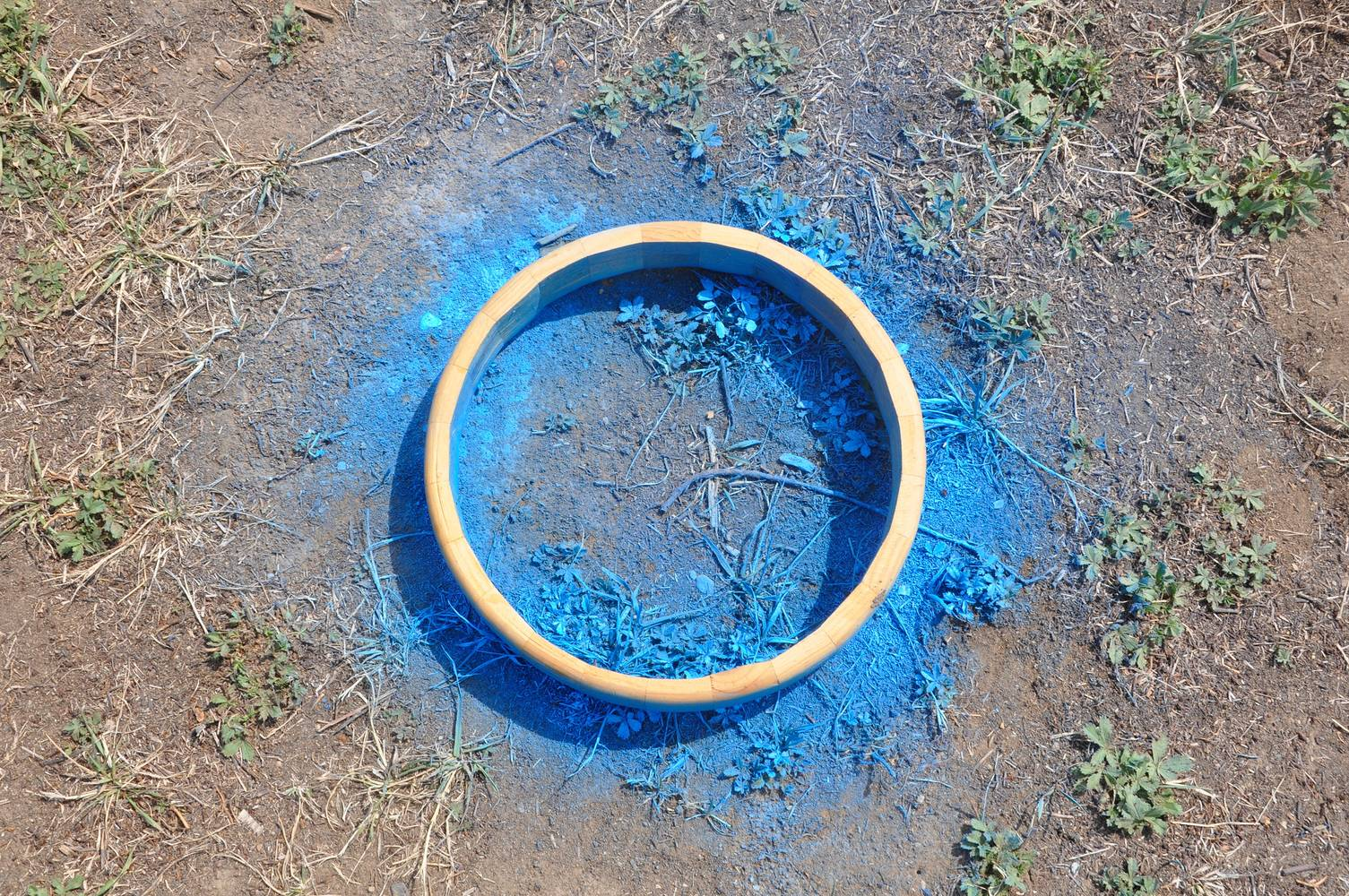 Painting Land Markings #BUSH by Tania Willard