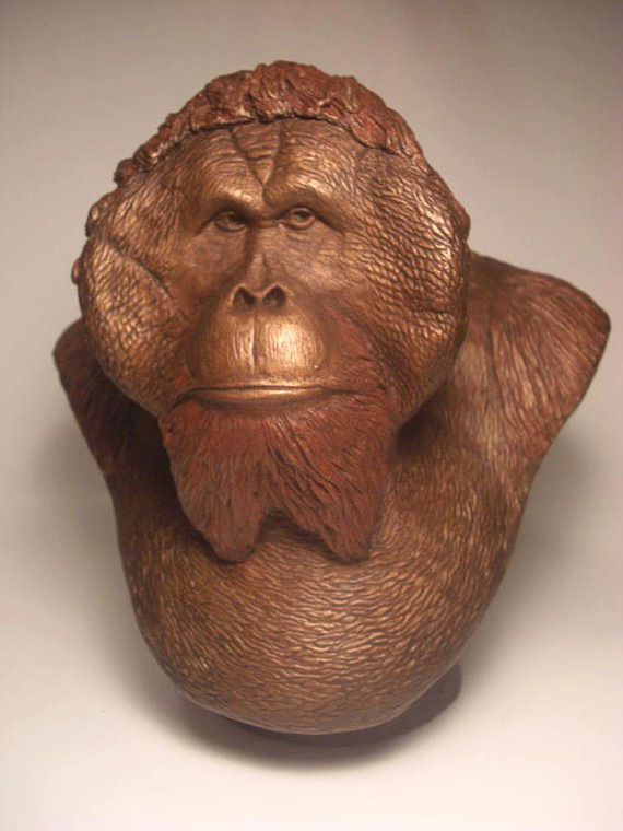 The King Orangutan Bust by Jason  Shanaman