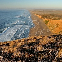 #SFO22 - Point Reyes Seashore #2 by Ivan Petrov