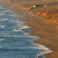 #SFO23 - Point Reyes Seashore #3 by Ivan Petrov