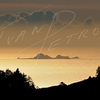 #SFO10 - Farallon Islands by Ivan Petrov