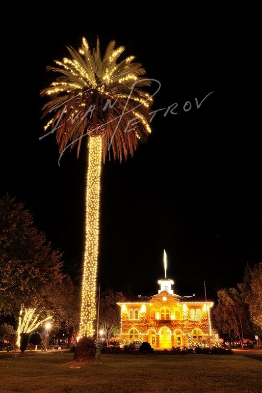 #SFO31 - Christmas in Sonoma by Ivan Petrov