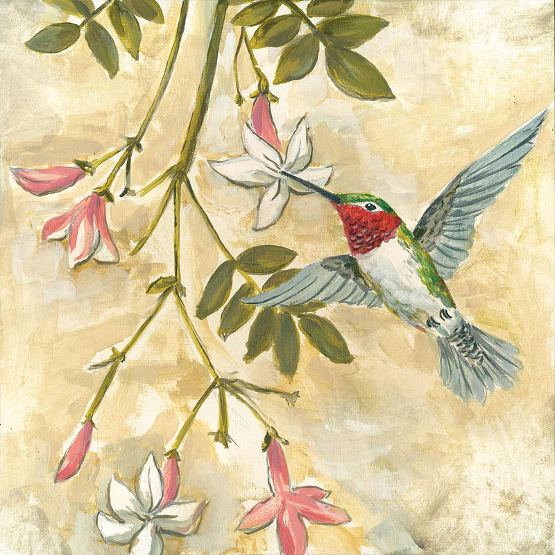 Print FLORAL HUMMINGBIRD C-105 by Cody Blomberg