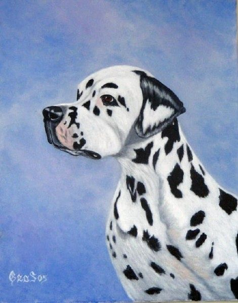 Acrylic painting Dalmation  by George Servais