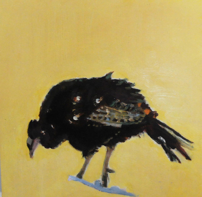 Oil painting Jewett's General Store Wild Poult II,2015 by Edith dora Rey