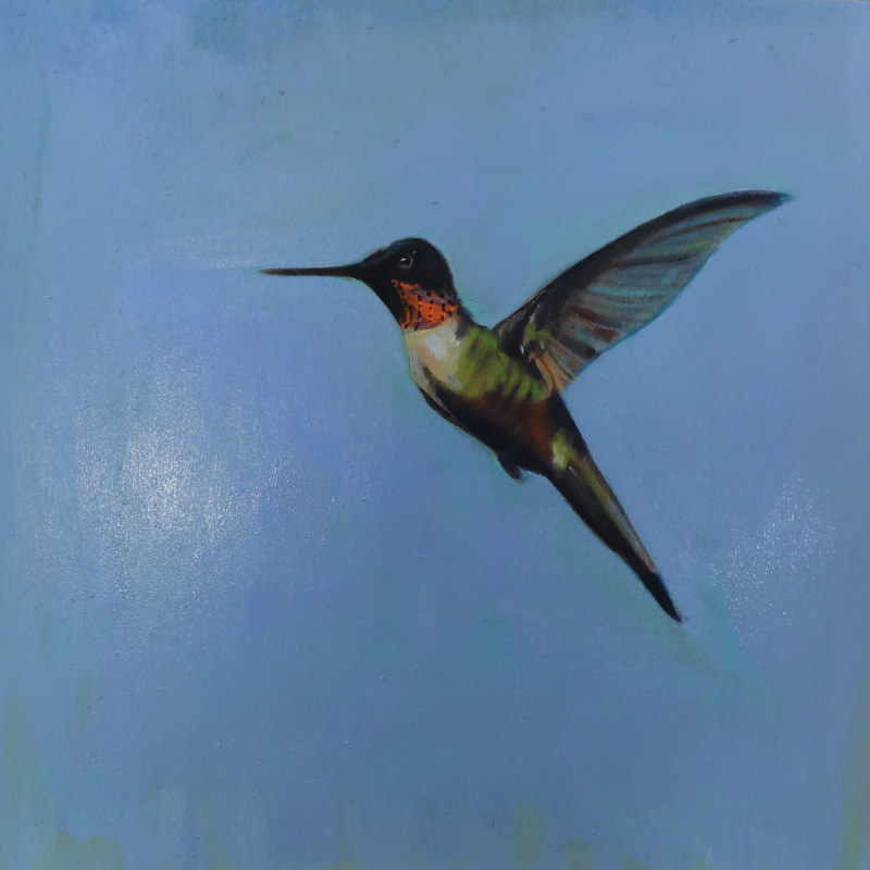 Oil painting  Backyard Hummingbird, 2015  by Edith dora Rey