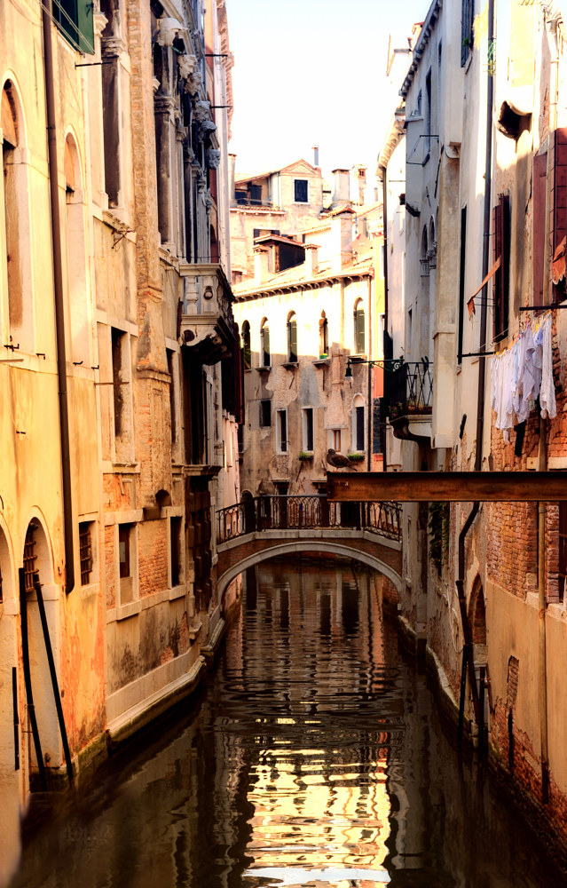Venice Canal ll by Dawn Reilly