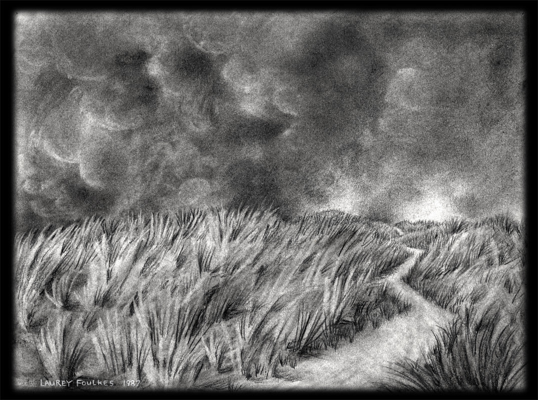 Journey Through the Grass, charcoal on paper, 11¾ x 14¾ in, Laurey Foulkes by Laurey  Foulkes