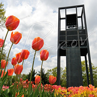 #DCA1 - The Netherlands Carillon by Ivan Petrov