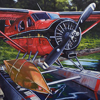Oil painting De Havilland Dream... The Red Pegasus by Bryan  Coombes