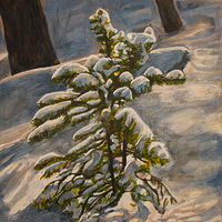 Acrylic painting Small Snowy Pine by Crystal Dipietro