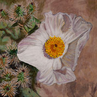 Acrylic painting Prickly Poppy by Crystal Dipietro