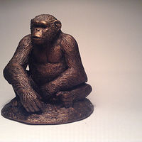 Sculpture Knuckles Light bronze finish by Jason  Shanaman