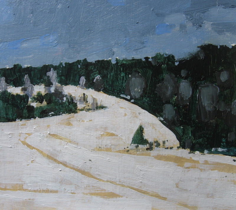 Acrylic painting Coyote Hill by Harry Stooshinoff