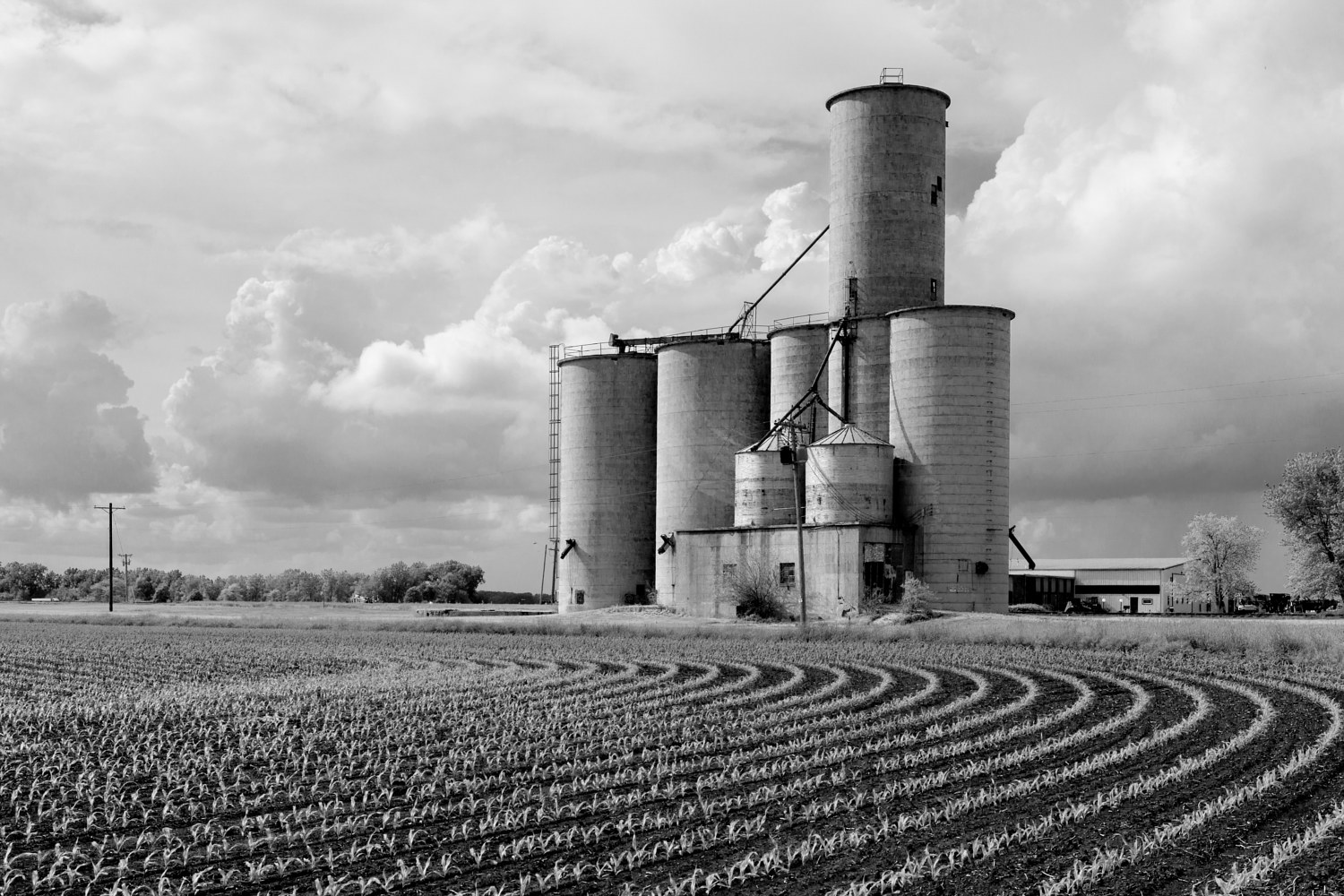 Farmer City Grain Elevator 2015 DSC00991-Edit by Ted Diamond