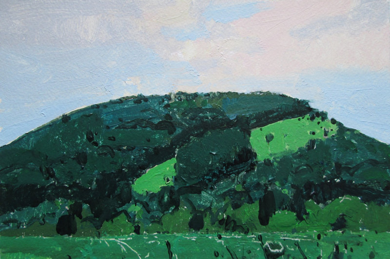 Acrylic painting Garden Hill, July 23 by Harry Stooshinoff