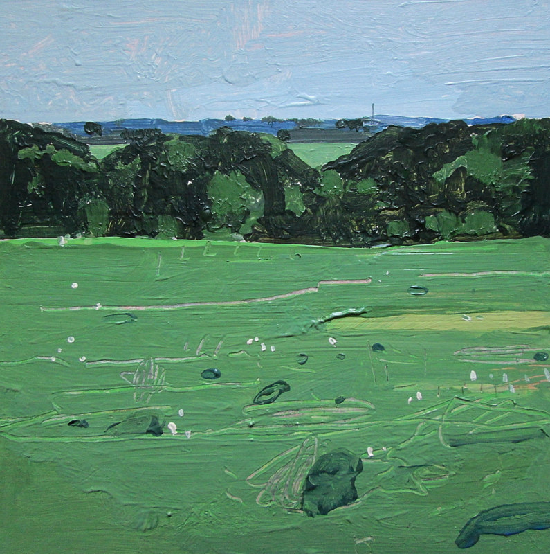 Acrylic painting July 4, Bobby's Field by Harry Stooshinoff