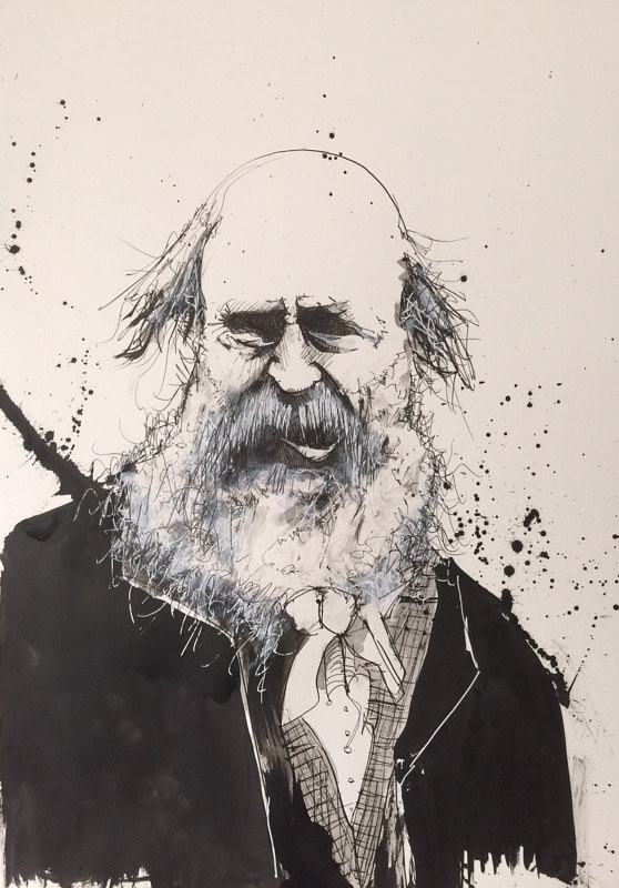Drawing DARWIN  by Joey Feldman