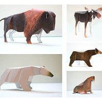 Complete Set- Canadian Animal Series by John Greg Ball