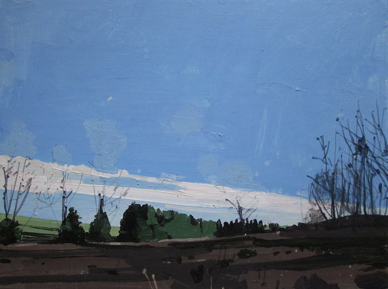 Acrylic painting Back Acres by Harry Stooshinoff