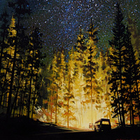 Acrylic painting Our Site at Night by Bryan  Coombes