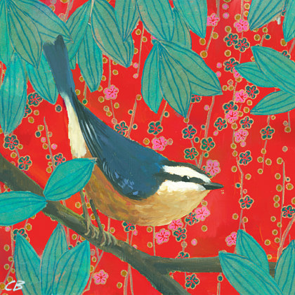 Print Red Nuthatch C020 by Cody Blomberg