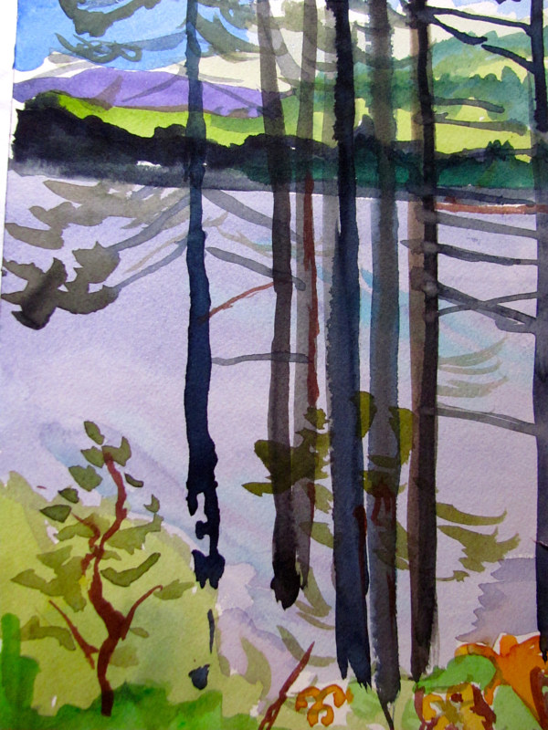 Watercolor Langley Pine Trees by Michael Shyka