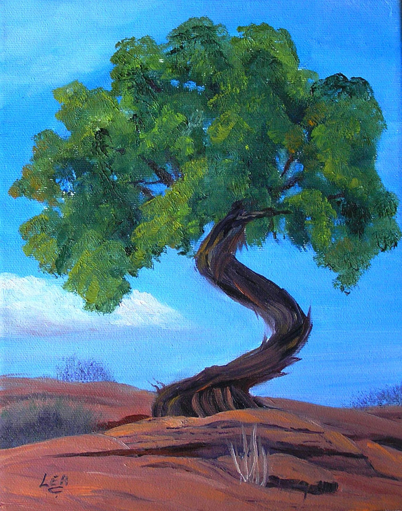 Oil painting Desert Juniper by Cecilia Lea