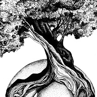 Print Tree of Life by Danielle Scott