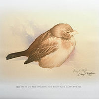 Print His Eye Is On The Sparrow by Gary Huff